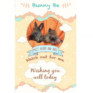 Bunny Be Bloom and Bree greeting card
