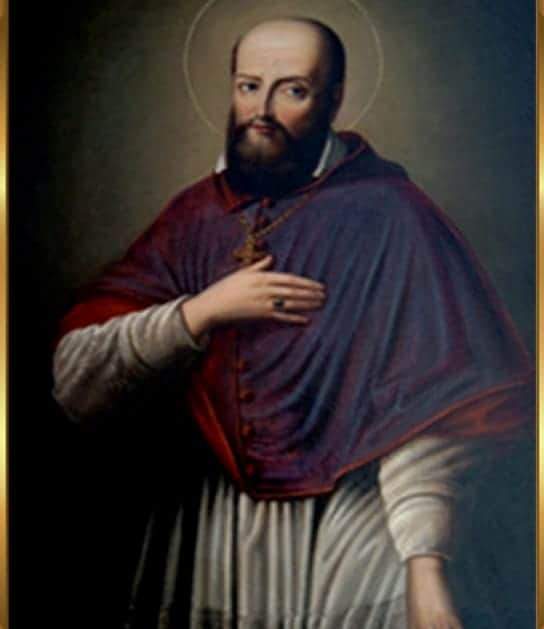St Francis de Sales Healing Oil (Patron for the Deaf and Writers)