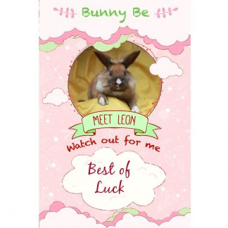 Bunny Be Leon greeting card