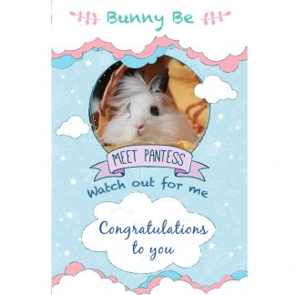 Bunny Be Pantess greeting card