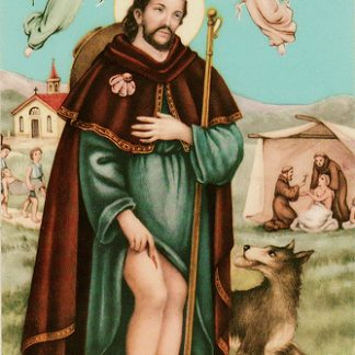 St Roch healing oil ( patron for knee problems)