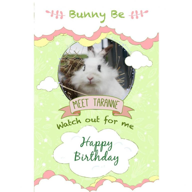 Bunny Be Taranne greeting card