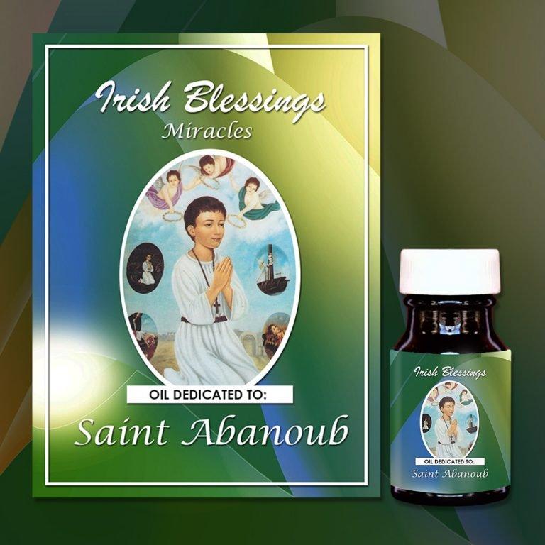 St Abanoub Presentation (2)