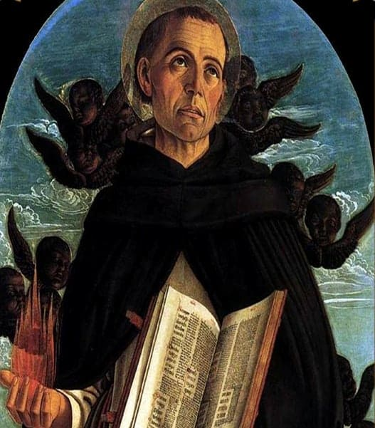 St Vincent Ferrer - Patrons | A Blessed Call To Love